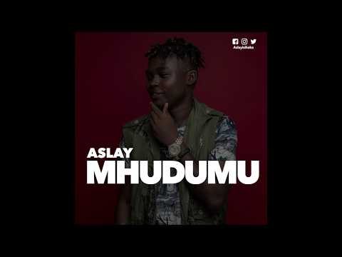 Aslay -  Muhudumu (Official Audio)