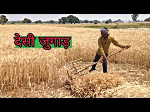 Genhu cutting- सबसे अच्छा और सस्ता तरीका || Topvairalvideo