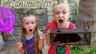 We Caught a Monster in Our Backyard!!! Can We Keep It?
