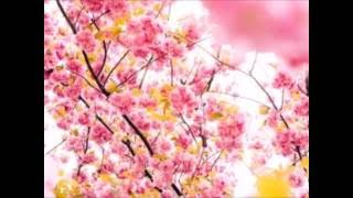 2016.6 作詞作曲 北山恵 編曲 TAKA X YUKI 歌 あべこ mixing&Mas...