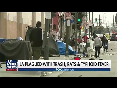 Amerikkka is finished!!! L.A. plagued with trash rats and typhoid fever (MenofValor12SouthSide)