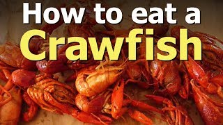 Best Way To Eat A Crawfish
