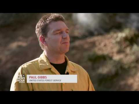 California wildfires take a toll on firefighters
