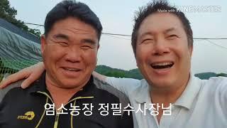 정필수염소농장사장님 가수이진관