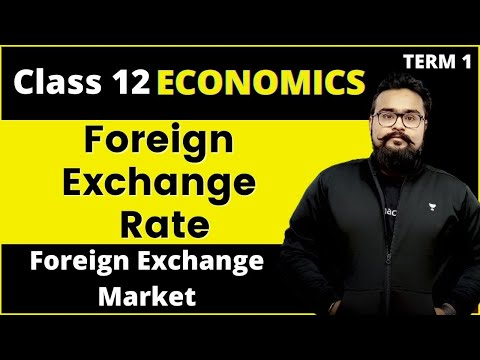 Determination of foreign exchange rate | Foreign exchange market class 12 macro economics video 39