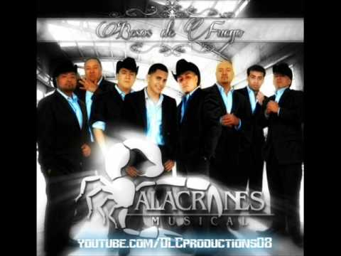 Alacranes Musical - Besos De Fuego [ALBUM PREVIEW]