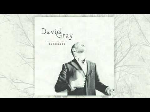 David Gray - When I Was In Your Heart (Official Audio)