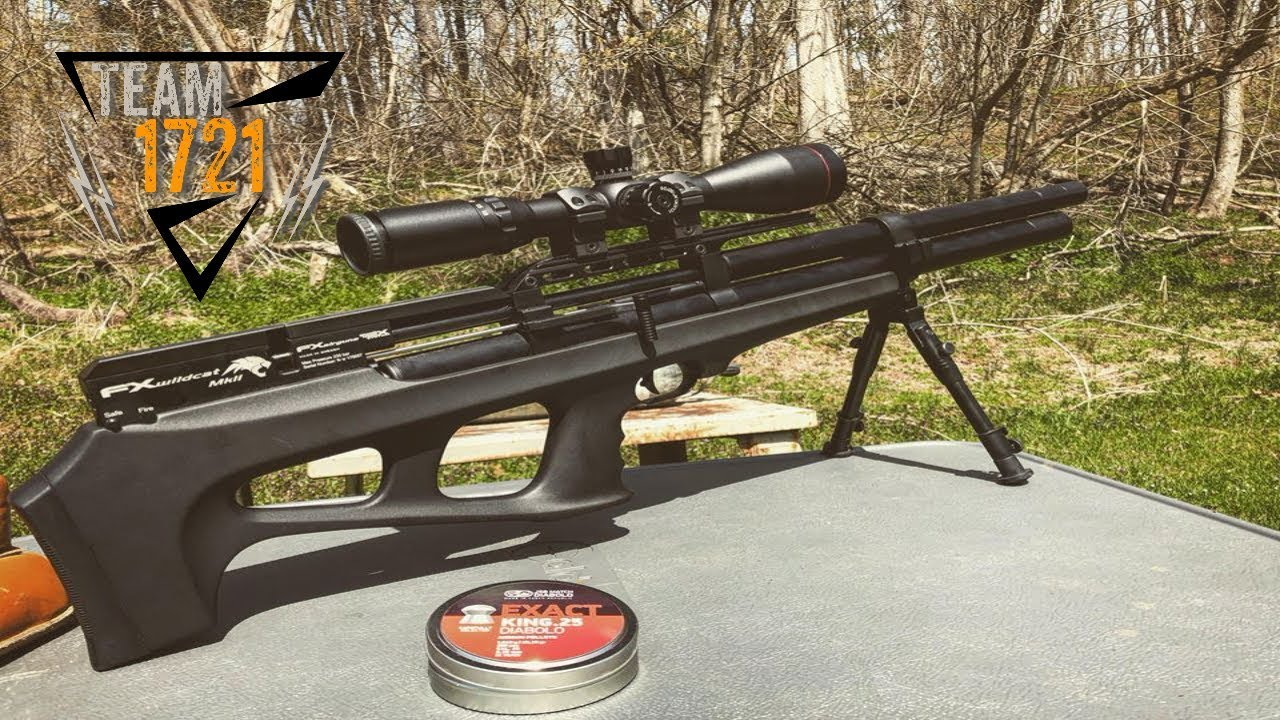 FX Wildcat MKII  25 cal Review and Ammo Test