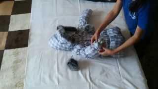 видео Купить стильный набор детской одежды «Модная Зайка»