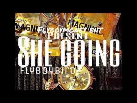 FLYBOYBIRD - She Going (Mp3 Vixen Video)