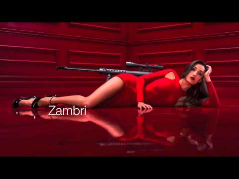 Zambri-Carry(Hooray For Earth Remix) mp3