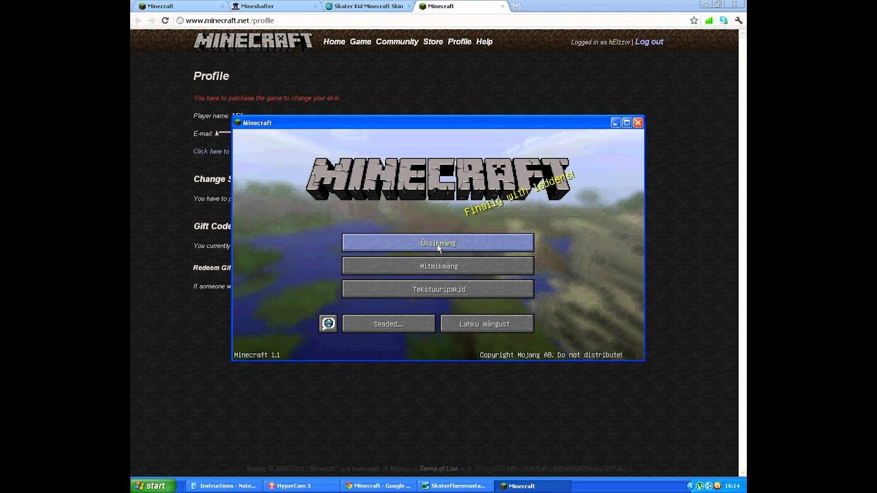 How to put a skin in Minecraft: instruction
