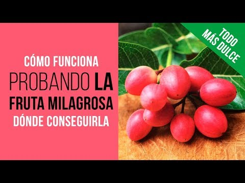 Probando la Fruta Milagrosa Ledidi que te hace sentir dulce al comer alimentos ácidos y sin nada de azúcar