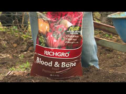 Setting Up A Spring Vegie Patch Using Blood And Bone