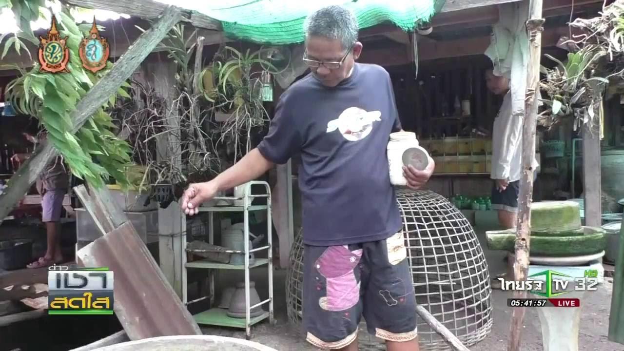 กำแพงเพชร เลี้ยงปลากัดขาย | 19-08-59 | เช้าข่าวชัดโซเชียล | ThairathTV