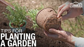 Tips and Tricks for How To Plant a Garden | Gardening Basics
