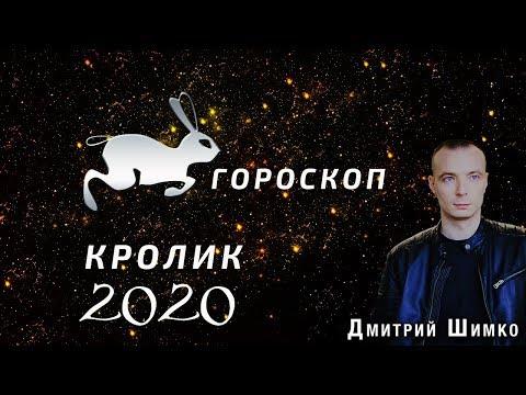 Гороскоп Кот/Кролик -2020. Астротиполог, Нумеролог - Дмитрий Шимко