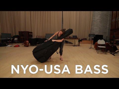 True Life: I'm a Bassist