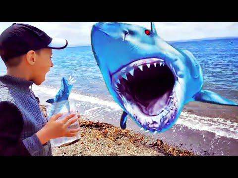 Развивающие и обучающие мультики для детей АКУЛЕНОК NEW BABY SHARK SONG for kids Nursery Rhymes