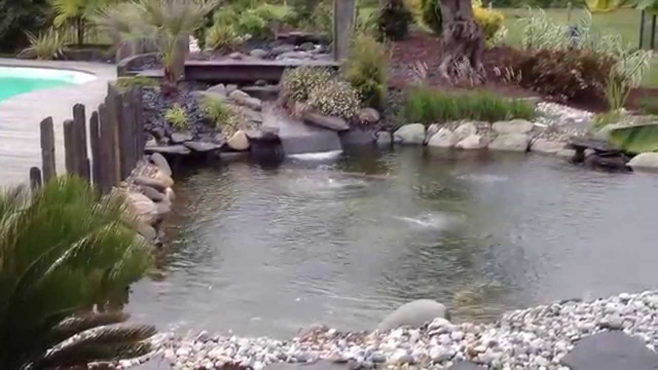 Bassin carpe koi par koi prestige youtube for Bassin koi belgique
