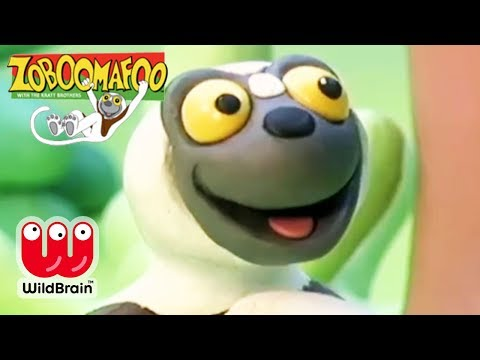Zoboomafoo   Episode: Dinosaur Egg!   Animals For Kids