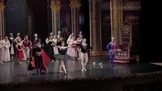 Theatre Russian Ballet Sankt Petersburg - Lacul Lebedelor [special message]