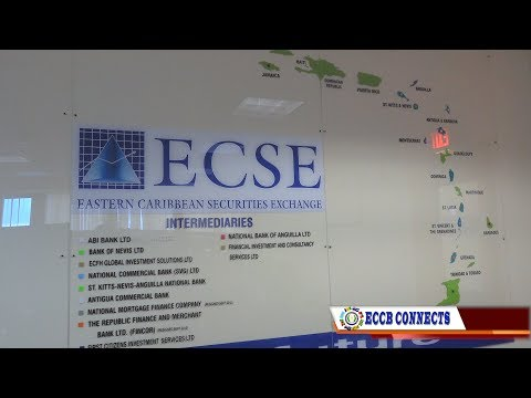 Yosoukeiba Connects Season 4 Episode 10 - ECSE: A viable investment option