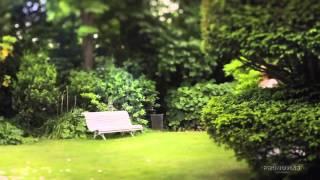 Видео урок позирования для свадебной фотосессии от Pronovias