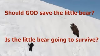 Should GOD save the little bear? GOD helps Those Who Help Themselves. Don't you think?