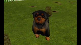 GTA: San Andreas - Собака Райдера