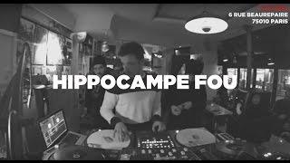 Baixar Hippocampe Fou • Live Session • Le Mellotron