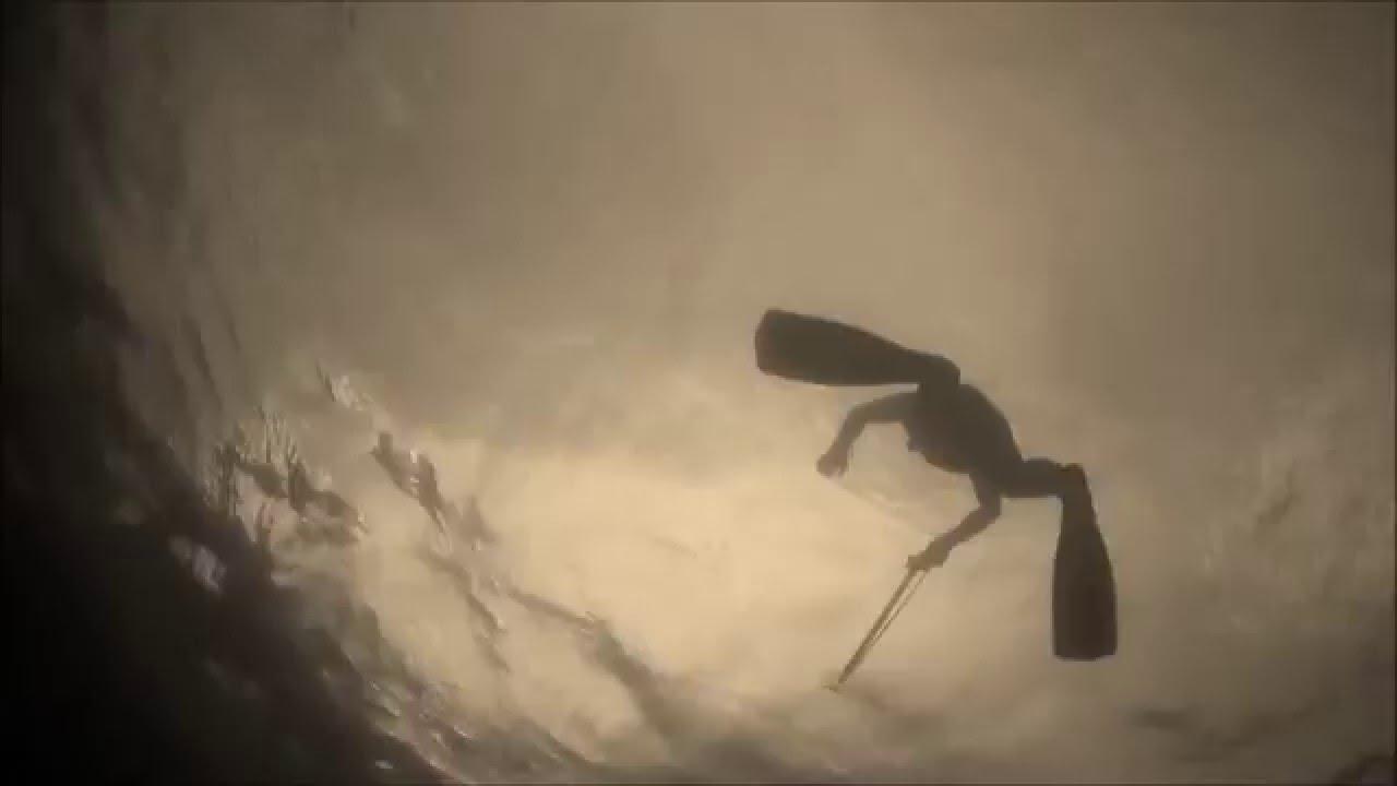 Прогулка на воде и под водой с амурами.Подводная охота.Волга