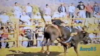 Muerte de Aguila de Caracha en Huecorio, 2009