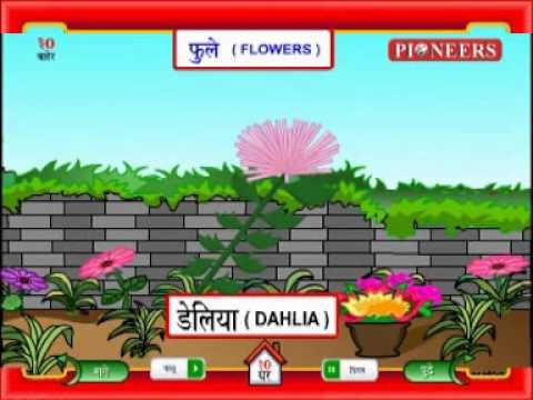 Learn Marathi Flowers फ ल