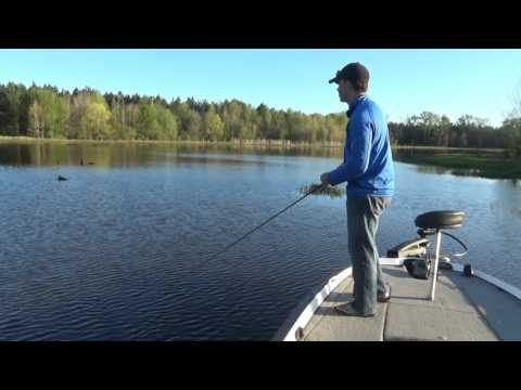 Swimming Worms for Largemouth Bass Fishing