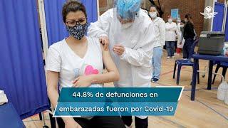 De 793  decesos en lo que va del año, 355 fueron  a causa del virus; gobierno, sin datos precisos de cuántas mujeres fueron vacunadas