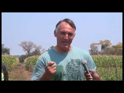 Zambia TV News Report on Liseli Farms