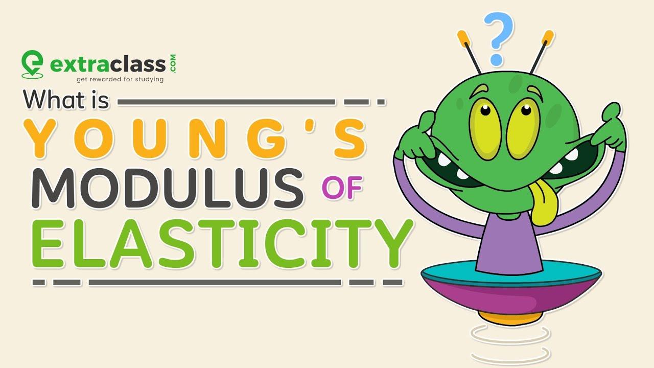 Modulus of Elasticity | Young's Modulus | Physics | Extraclass.com
