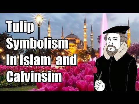 Part 6 : Calvinism and Islam are the Same Religion : Tulip Symbolism