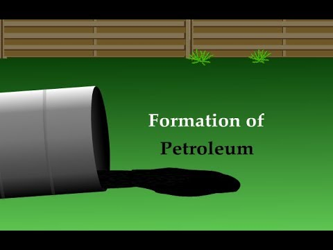 FORMATION OF PETROLEUM