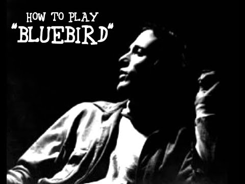 How To Play Bluebird By Buffalo Springfield Acoustic Guitar