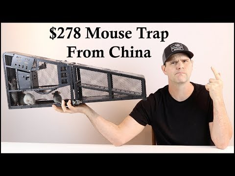 $278 Mouse Trap From China. Is the ZCF Mouse Trap Worth It? Mousetrap Monday