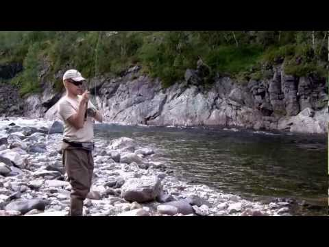 Big Salmon Dry Fly Fishing in Norway 2011