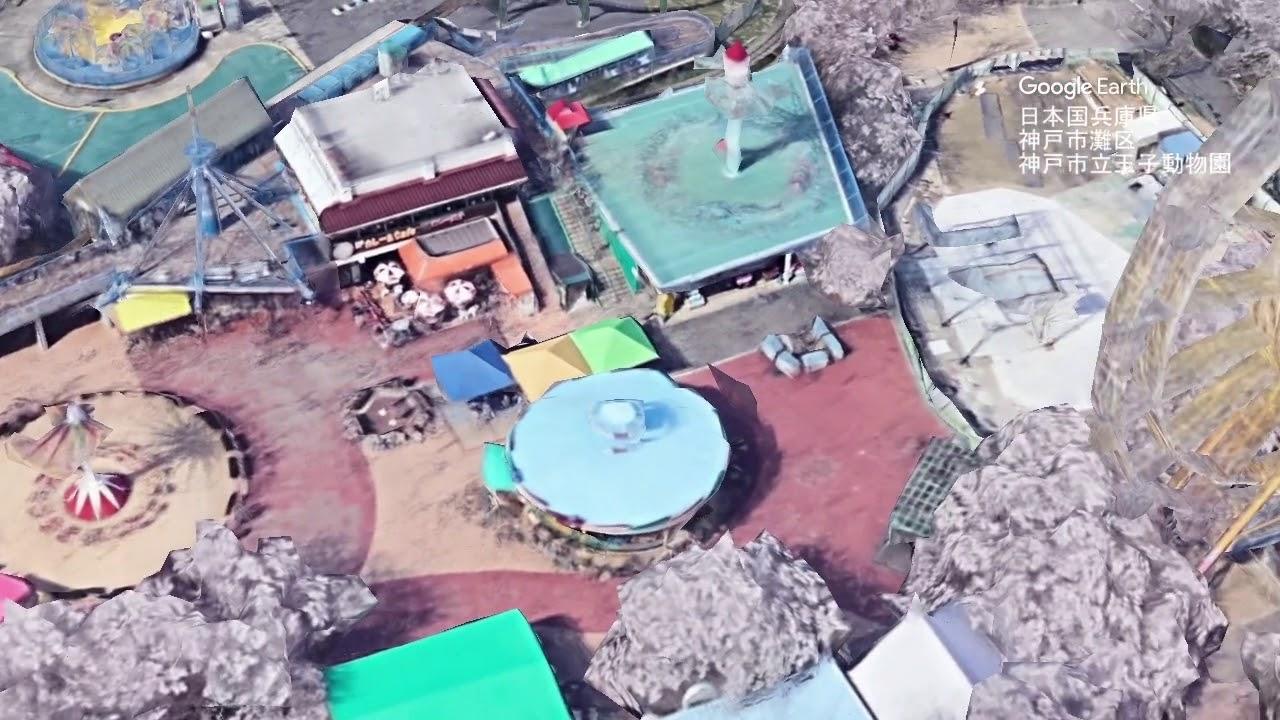 王子 動物園