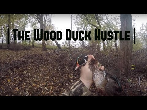 Duck Hunting Wisconsin Public Land 2017 | The Forgotten Hunt