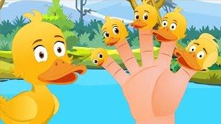 Keluarga Jari | Bebek - bebek | Lagu Anak TV| Duck Finger Family in Bahasa Indonesia