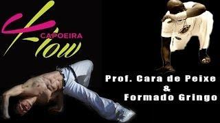 Brazil x France - Capoeira Flow