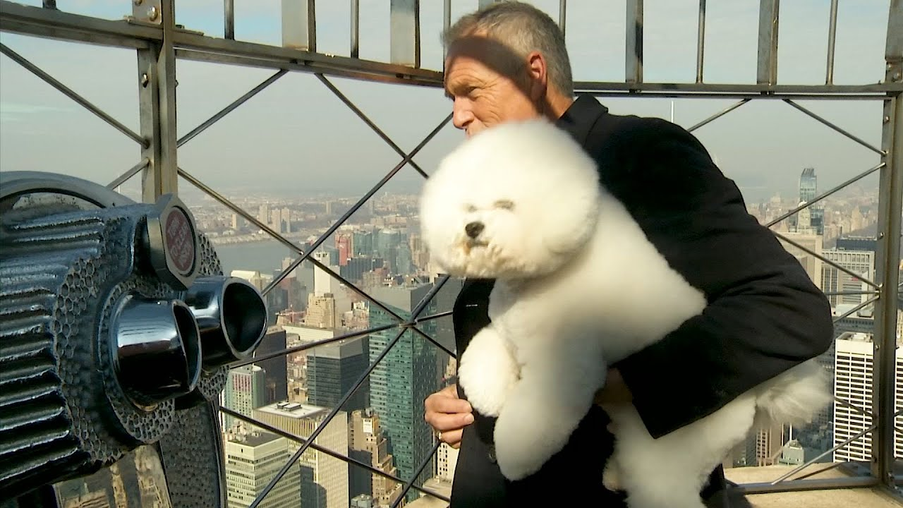 America's Top Dog Visits Empire State Building