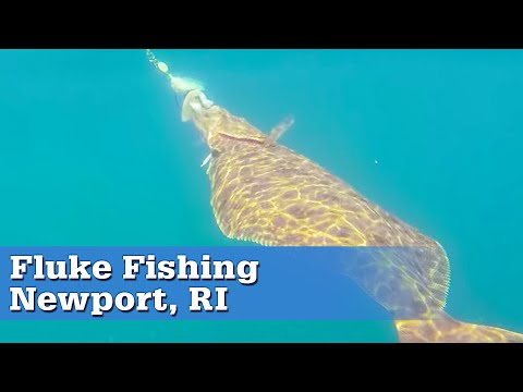 Fluke Fishing In Newport, RI | S13 E5