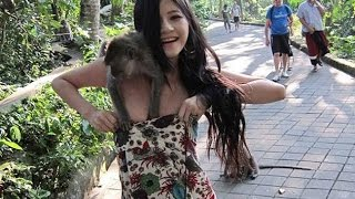 Funny Videos - News Bloopers 2015 Compilation - TOP Funny Videos 2015
